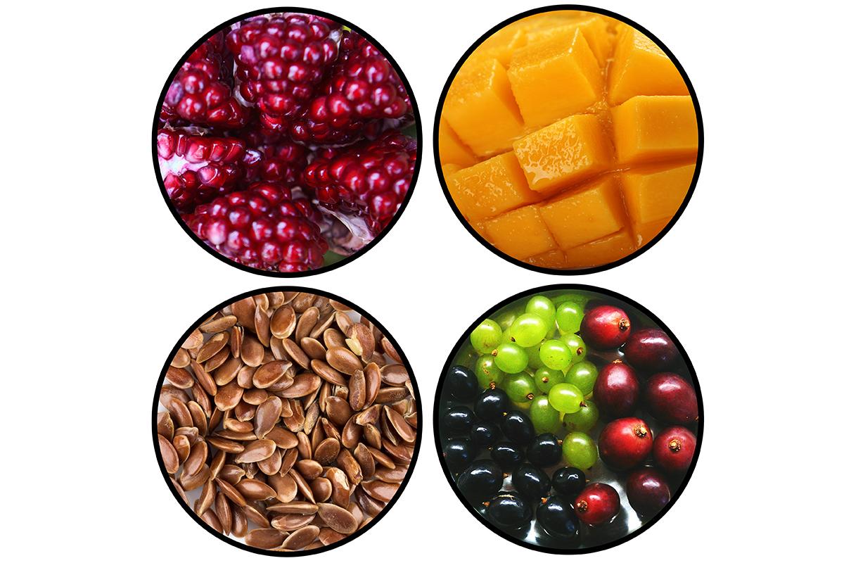 Polyphenols antioxidants