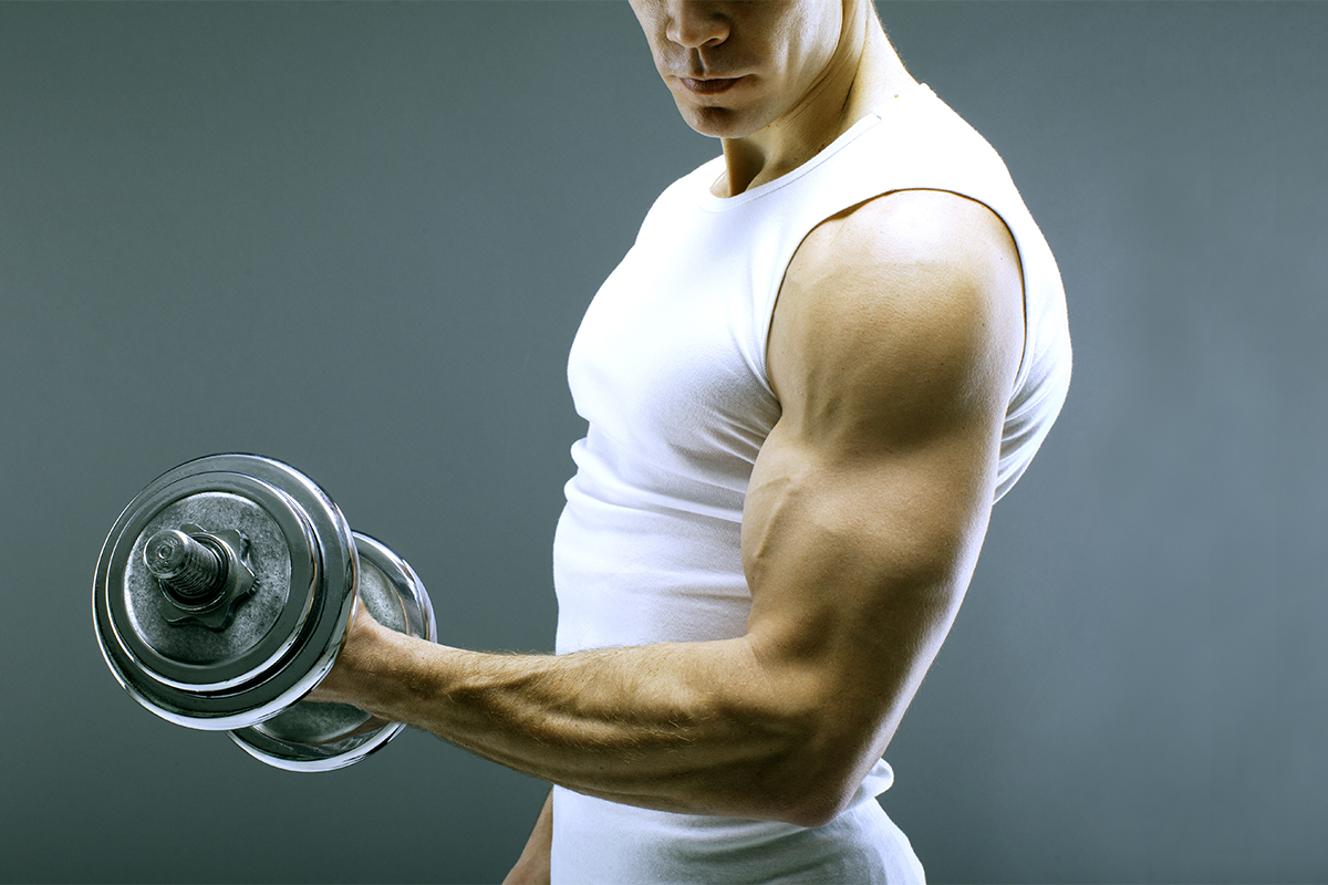 Building muscles with plant protein
